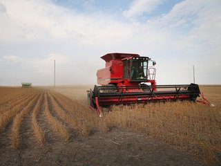 Farmland prices expected to decline